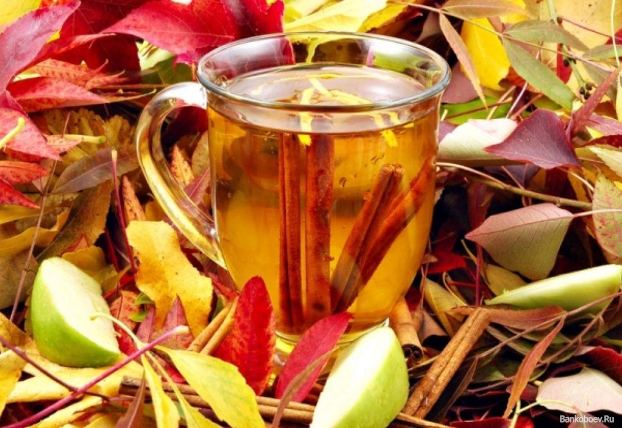 Чай с корицей и яблоком особенно хорош осенью, когда тянет согреться.