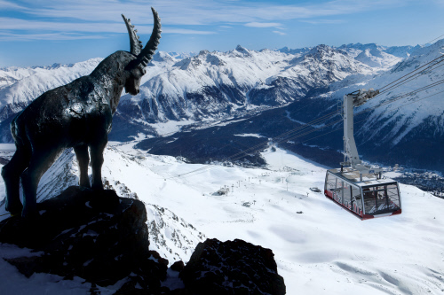 Скульптура ибекса у вершины Пиц Наир над Санкт-Морицем. Источник http://planeta-tour.ru/