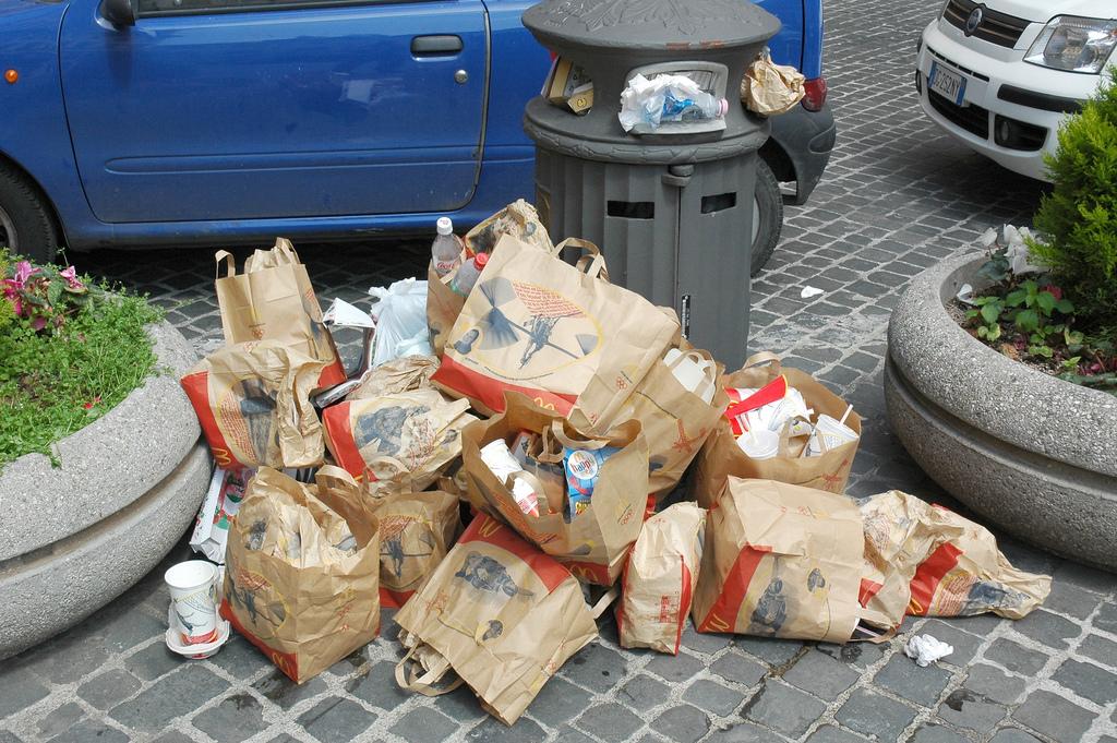 Фастфуды служат одним из источников нарастания мусора за счет индивидуальной упаковки каждого блюда. Источник  http://newsonia.com/